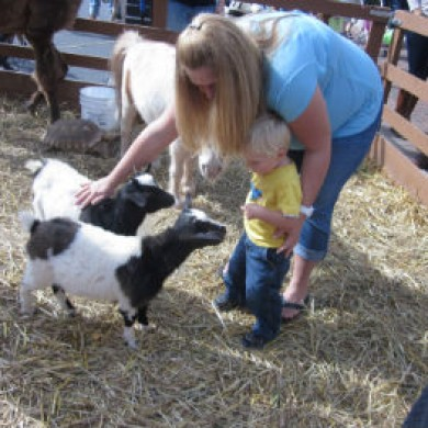 Mother and little son petting baby sheep in pen selinsgrove, PA